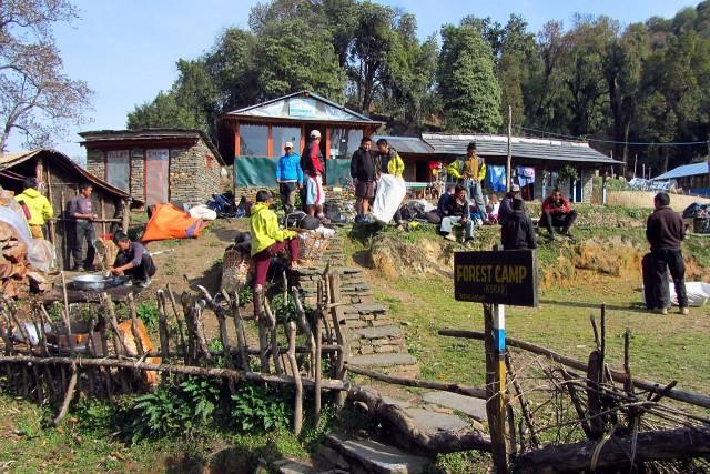 Forst_camp