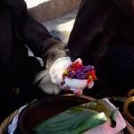 Flower Rice